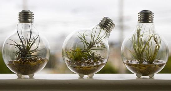 Bulb planter1