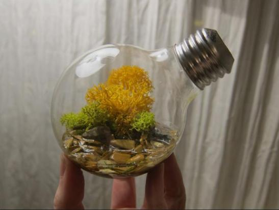 Creative Uses For Discarded Light Bulbs Do It And How