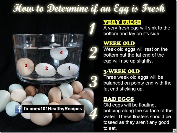 how to tell if an egg is fresh do it and how. Black Bedroom Furniture Sets. Home Design Ideas