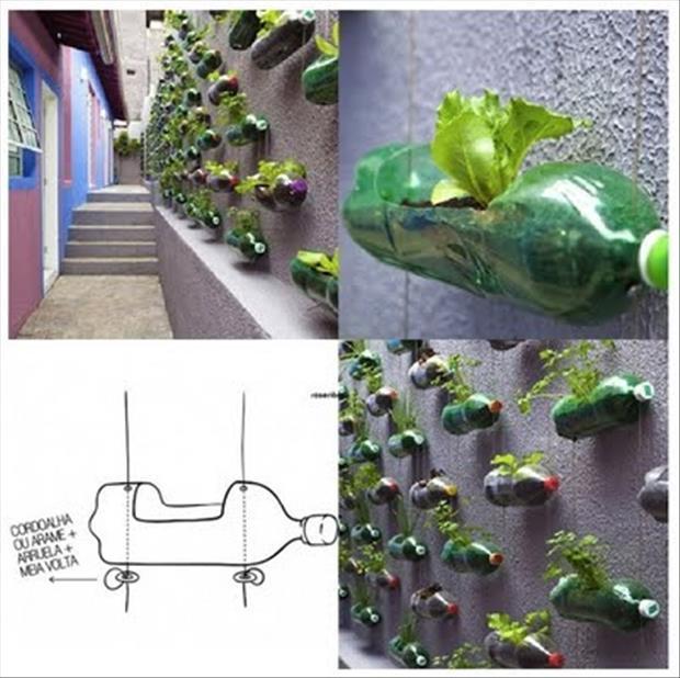 2 liter soda bottle wall garden do it and how for Garden wall idea