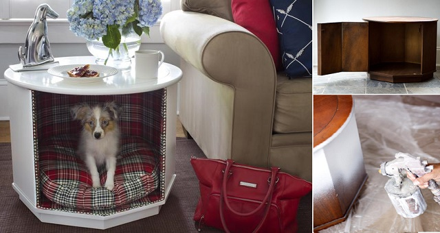 How-to-Make-Coffee-Table-Pet-Bed