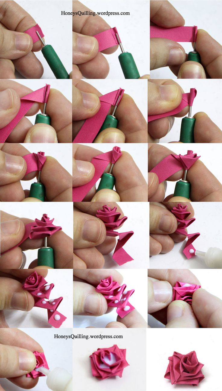 Paper quilled rose do it and how mightylinksfo