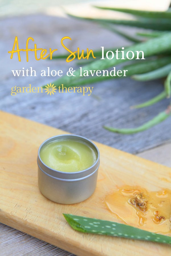 homemade-after-sun-lotion-with-aloe-and-lavender-a5