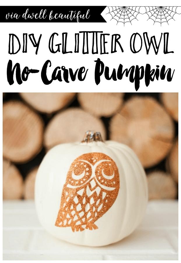 no-carve-pumpkin-project