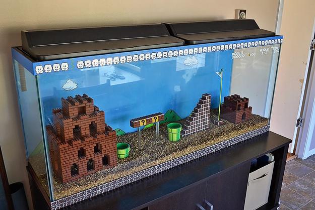 super-mario-brothers-aquarium-Kelsey-Kronmiller-3