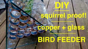 how-to-make-an-awesome-squirrel-proof-bird-feeder