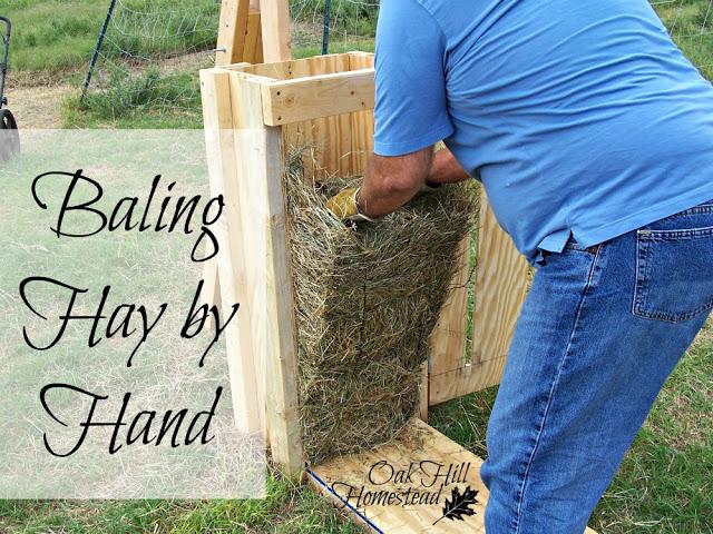 hay-baling