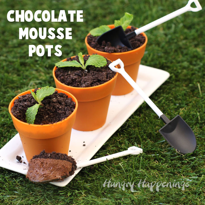 chocolate-mousse-pots-cookie-crumb-dirt.jpg