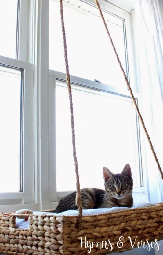 Basket-Cat-Perch-655x1024
