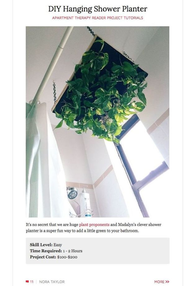 diy-hanging-shower-planter-bathroom-ideas-container-gardening-gardening.jpg
