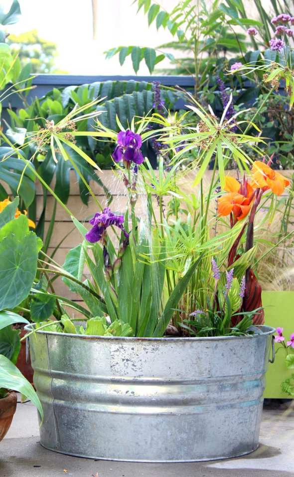diy-solar-fountain-bird-bath-outdoor-solar-pump-patio-pond-water-plants-apieceofrainbow-17