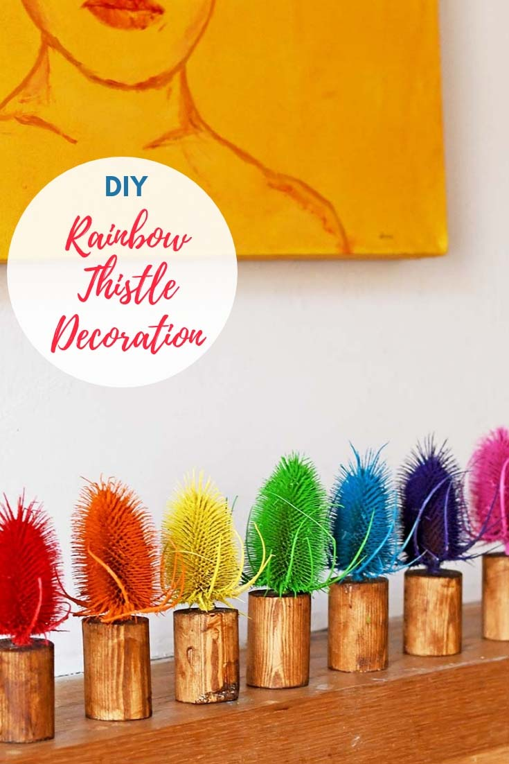 diy-rainbow-dried-thistle-decoration-pin