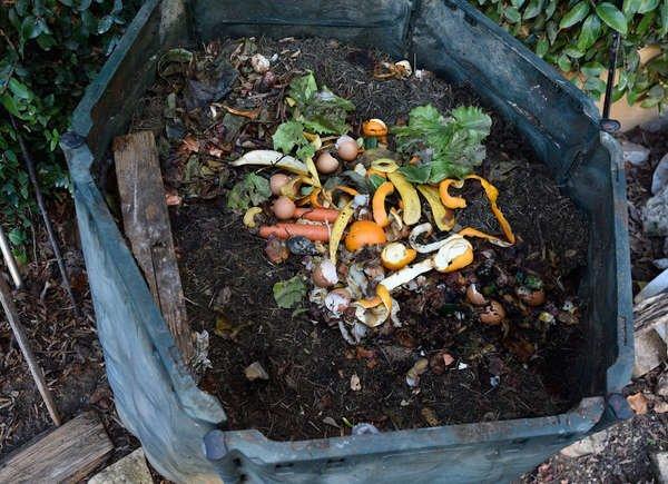 compost_pile.jpeg