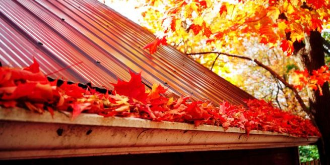 marple-leaves-in-gutter-fall-time-royalty-free-image-510864356-1534173698
