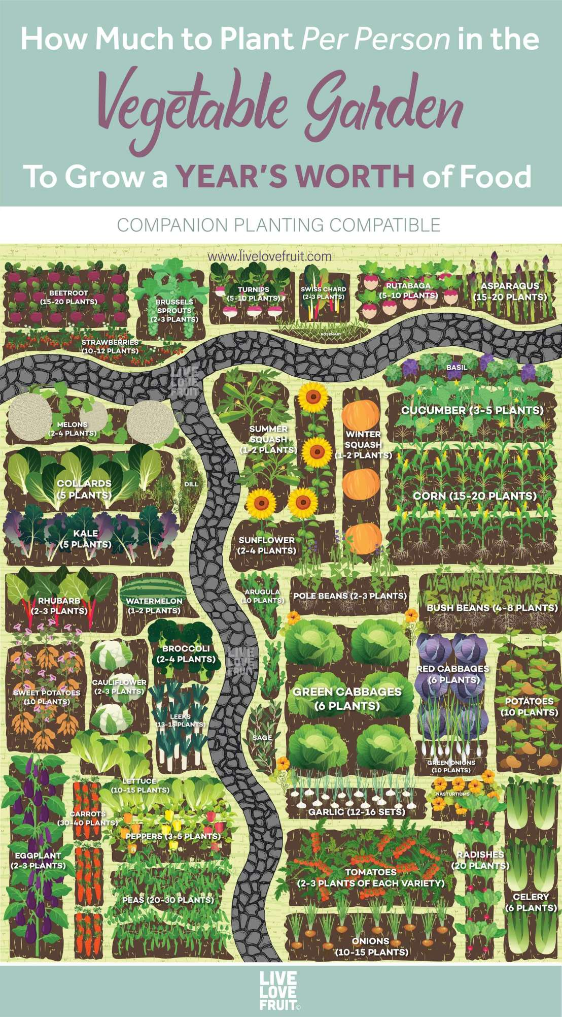 how-much-vegetables-per-person-garden